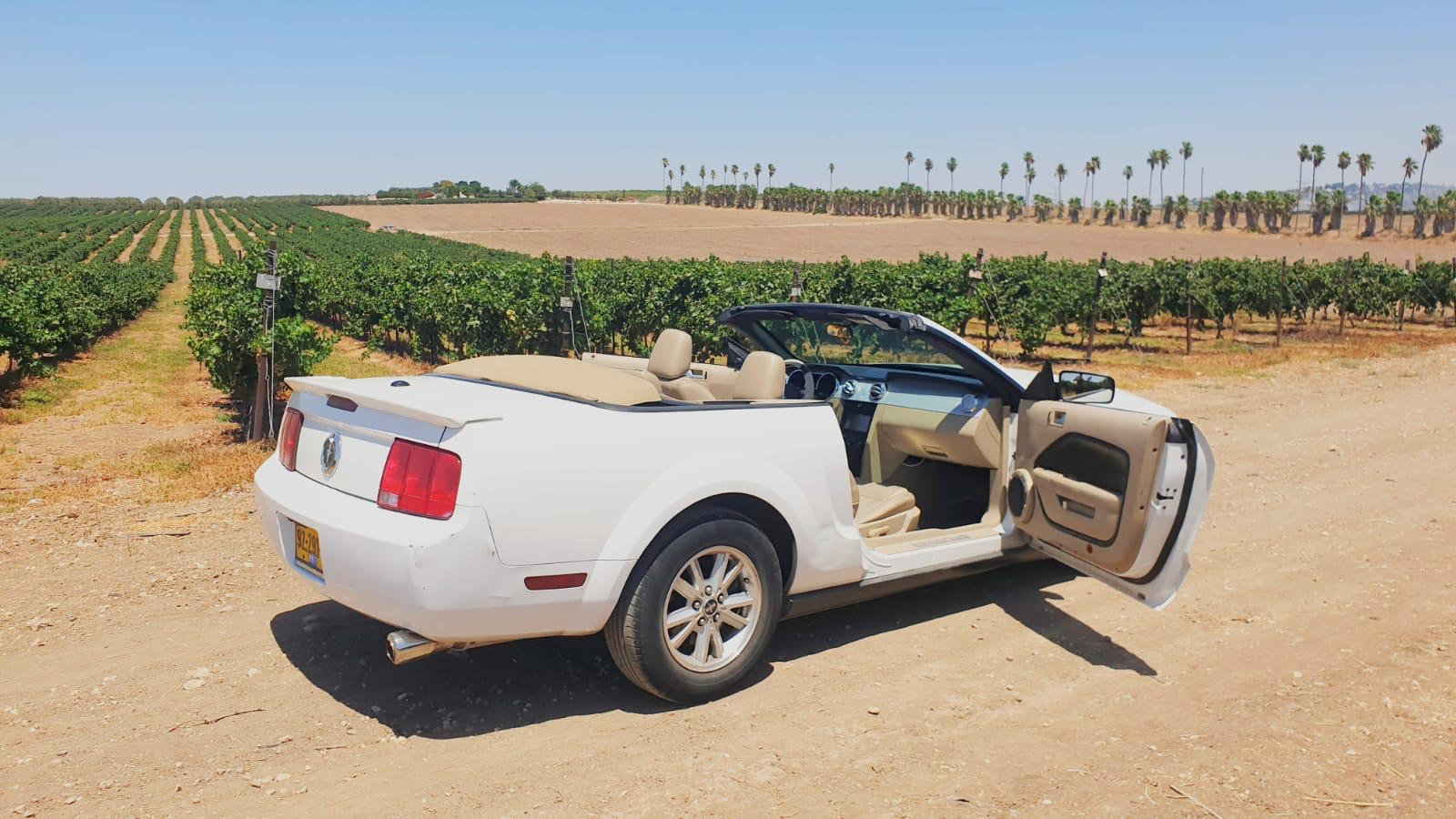 השכרת רכב יוקרה לחתונה car4us